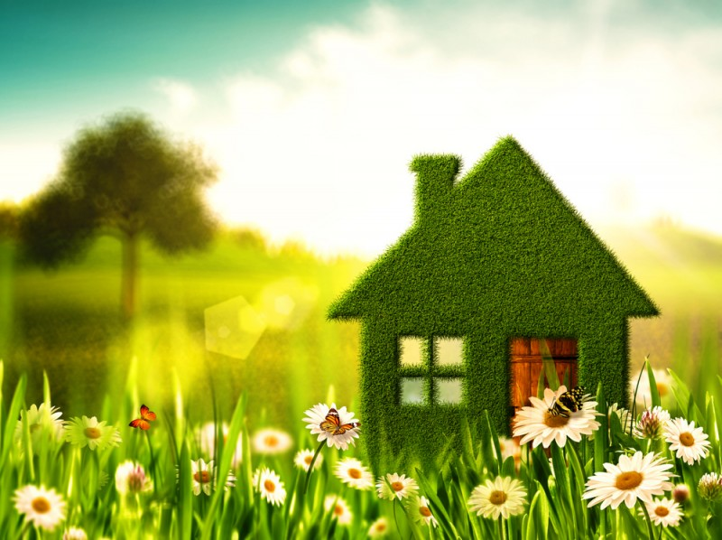 Going green could make your buy-to-let more appealing to tenants