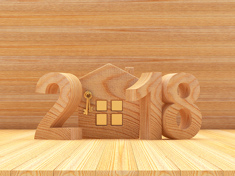 2018: A year of opportunity