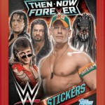 WWE Stickers Packet
